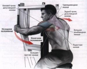 комплекс упражнений на дельты