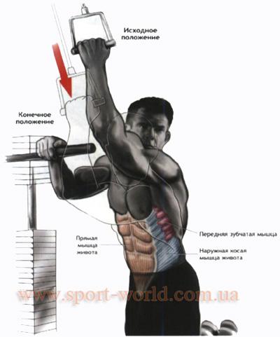 как накачать косую мышцу