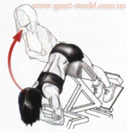 как накачать нижнюю часть спины