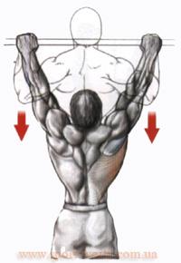 упражнение для широчайшей мышцы дома
