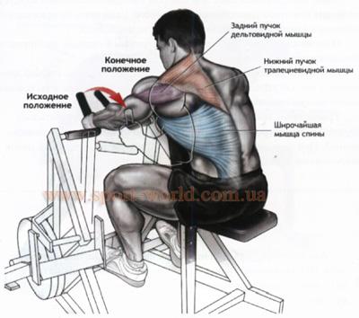 упражнения для широчайшей мышцы спины на тренажере