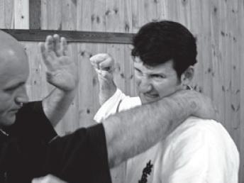 методика тренировки пальцев бадюка