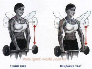 упражнения для трапециевидных мышц