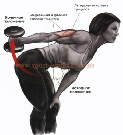 упражнение на трицепс с гантелями